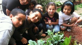 Whole Kids Foundation & Other New Friends Help Rebuild Our Coney Island Garden Featured Image